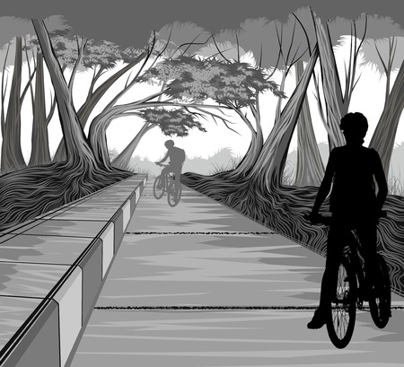 people nature: Cycling in the park vector silhouette people nature landscape background