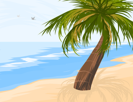 Palm tree on the beach vector nature seascape background Illustration