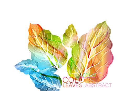 Colorful leaf nature art vector abstract on a whitebackground