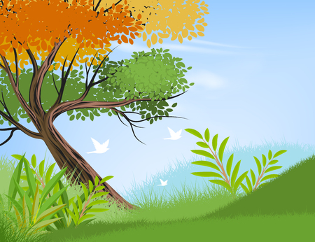 Beautiful view tree and forest scene vector nature landscape background Illustration
