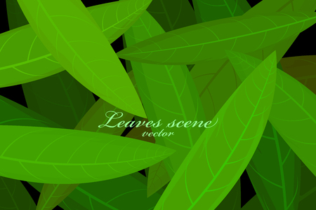 Leaves scene vector wallpaper nature backgrounds