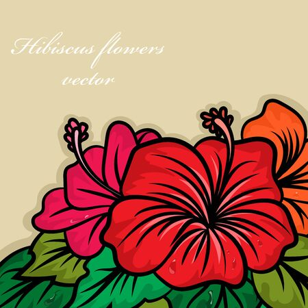Hibiscus flowers drawing vector wallpaper nature backgrounds