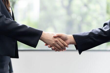 Business Woman Women Shake Hands