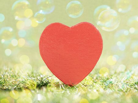 Heart and Soap bubbles Imagens