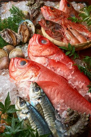 Collection of fresh seafood in Japan
