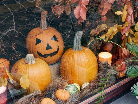 Halloween Pumpkin Display