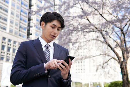 Japanese male businessman who operates a smartphone against the background of cherry blossoms in the office district