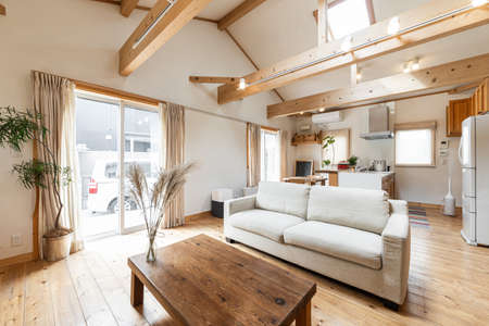 Living room in a house with impressive wood and skylights Reklamní fotografie