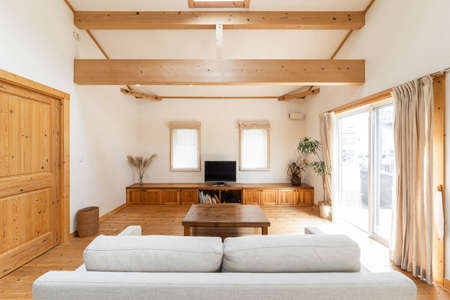 Living room and kitchen in a single house with high ceilings