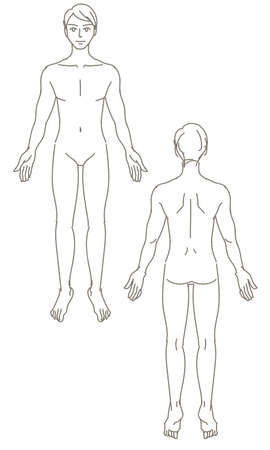 Male Whole Body Human Body Illustration Illustration