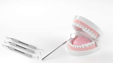 3D rendering of tooth model and scaler