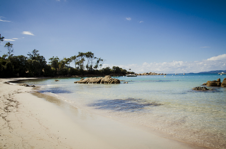 Silver beach with limpid water in Corsica