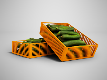 Yellow two plastic box with zucchini front view 3d render on gray background with shadow