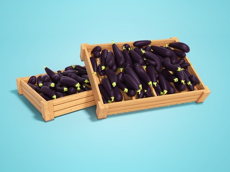 Wooden box pallet for the presentation of eggplants for sale 3d render on blue background with shadow Banque d'images - 120934669