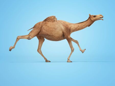 3d rendering concept of camel running on blue background with shadow
