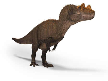 Concept dinosaur tyrannosaurus 3d rendering on white background with shadow