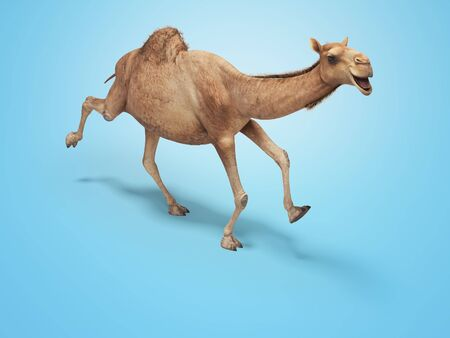 Camel run 3d rendering on blue background with shadow