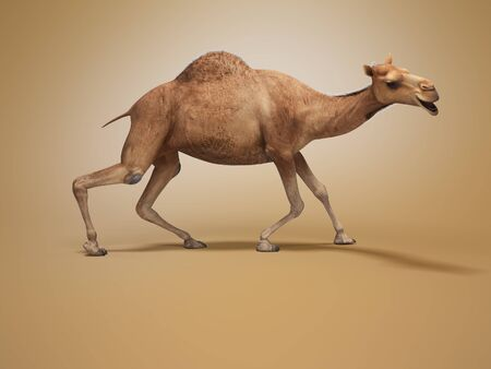 Camel on weak legs 3d rendering on orange background with shadow