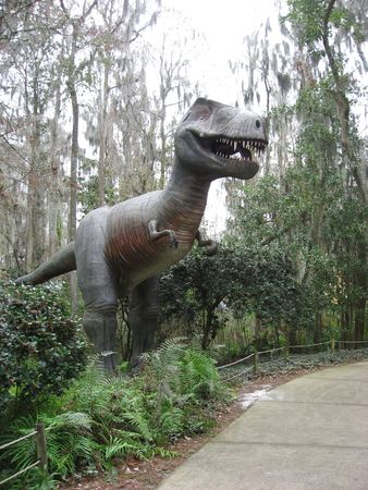 larger than life: Tyrannosaurus (T-Rex) Dinosaur - Taken near Tampa Florida
