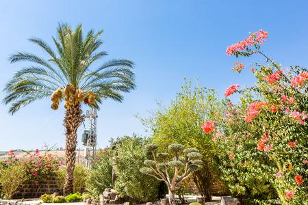 09012016, Capernaum, the city of Jesus in Galilee, Israel, Galilee.
