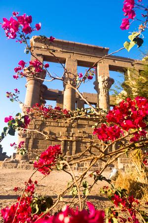 エジプト、アフリカのナイル川のアスワンのフィラエ寺院 写真素材 - 98662716