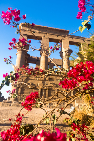 Philae temple in aswan on the Nile in Egypt, Africa