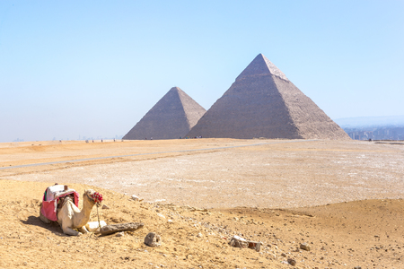 The pyramids at Giza in Egypt 스톡 콘텐츠