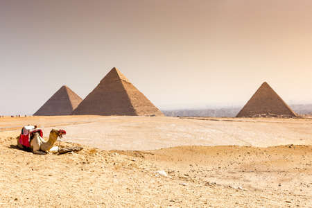 The pyramids at Giza in Egypt Stockfoto