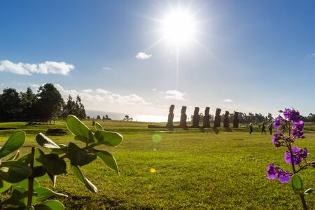 Seven Ahu Akivi Moai, which are the only Moai to face the sea. Easter Island. Chile.