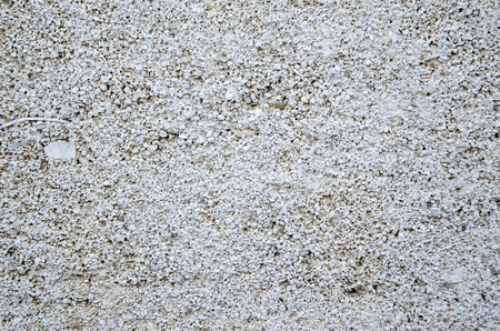 coquina: Coquina antigua muralla de cerca la textura.