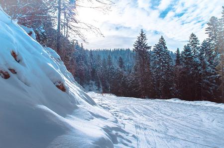 skipiste: Skigebiet Wald sonnigen Piste. Lizenzfreie Bilder