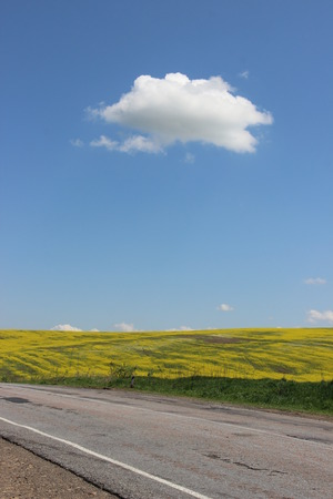 endlessness: road and field