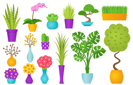 Potted plant in pot. Vector. Indoor flowers in flat design isolated on white background. Houseplant set. Cartoon animated colorful illustration with icons orchid, bonsai, sansevieria etc.