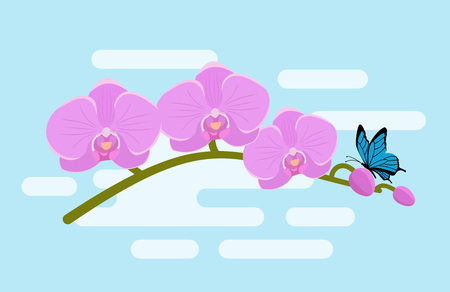 Orchid in flat design. Vector. Branch pink orchid with butterfly on blue background. Nature horizontal banner.