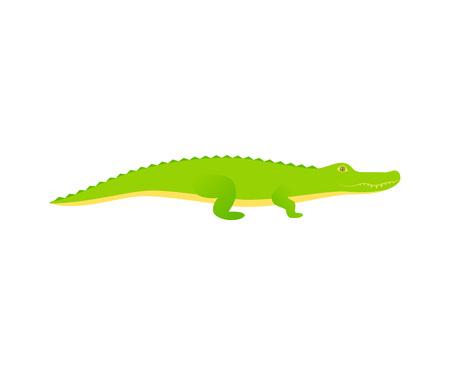 a2b222b55530d Crocodile. Vector. Alligator reptile in flat design. Wild fauna isolated. Zoo  animal