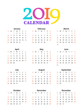 2019 Calendar. Vector. Week starts Sunday in minimal simple style. Stationery 2019 year vertical pocket template. Yearly calendar organizer. Portrait orientation, english. Colorful illustration.