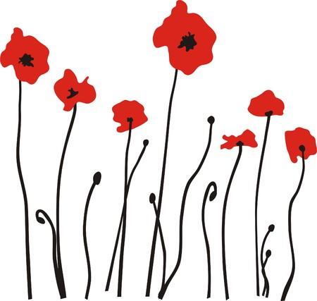 poppy: POPPY Illustration