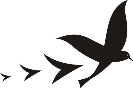 displacement: BIRD FLIGHT