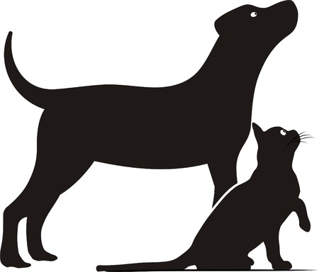 delineation: DOG AND CAT Illustration