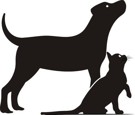 DOG AND CAT Illustration