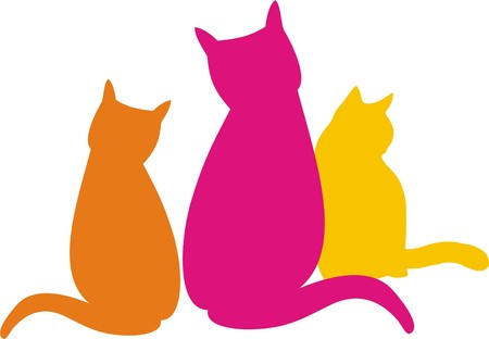 threesome: CAT AND CAT