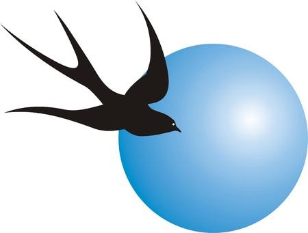 migratory: BIRD AND SEA