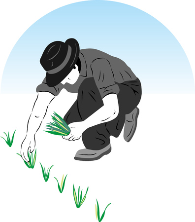Vector Illustration of a farmer planting rice