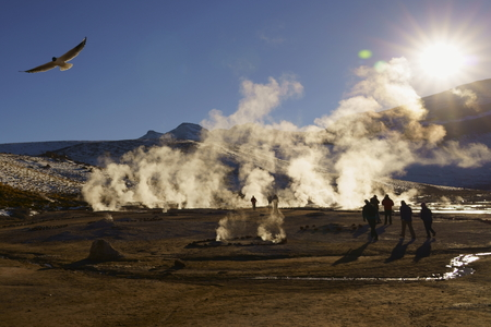 El Tatio Geysers, San Pedro de Atacama, Chile