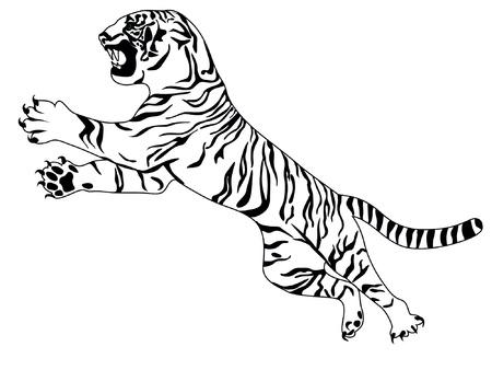 attack: tiger