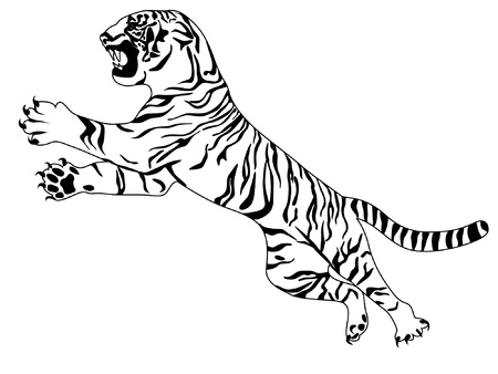 tatouage visage: tigre Illustration