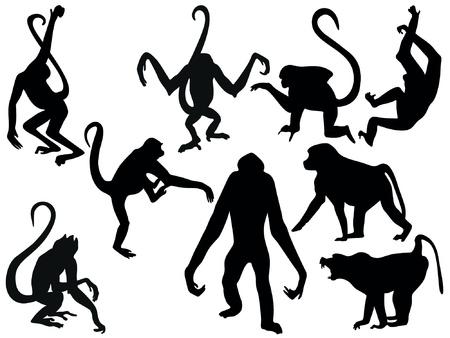 silueta mono: monos