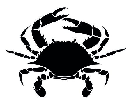 arthropods: crab