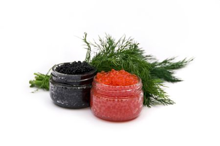 red and black caviar on a white background, bunch of greenery photo