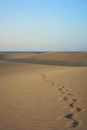 footsteps: Footsteps on sandy dunes in desert with natural colors